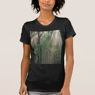 Sunlight Through Forrest T-Shirt
