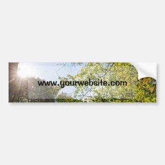 Sunlight Through Green Autumn Leaves Car Bumper Sticker