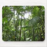 Sunlight Through Rainforest Canopy Mousepad