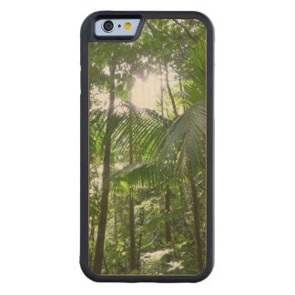 Sunlight Through Rainforest Canopy Tropical Green Carved® Maple iPhone 6 Bumper