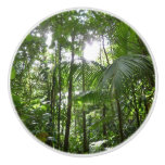 Sunlight Through Rainforest Canopy Tropical Green Ceramic Knob
