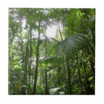 Sunlight Through Rainforest Canopy Tropical Green Ceramic Tile