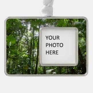 Sunlight Through Rainforest Canopy Tropical Green Christmas Ornament