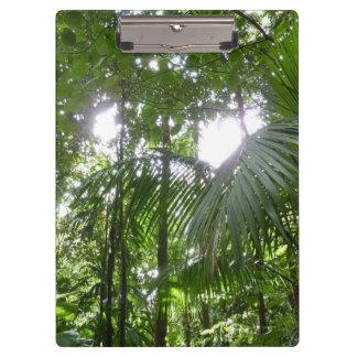 Sunlight Through Rainforest Canopy Tropical Green Clipboard