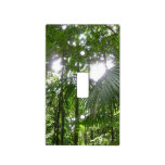 Sunlight Through Rainforest Canopy Tropical Green Switch Plate Cover