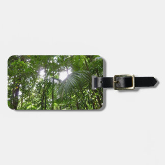 Sunlight Through Rainforest Canopy Tropical Green Luggage Tag