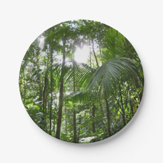 Sunlight Through Rainforest Canopy Tropical Green Paper Plate