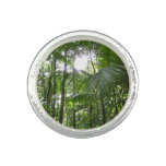 Sunlight Through Rainforest Canopy Tropical Green Photo Ring