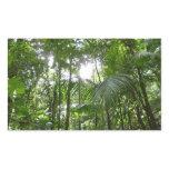 Sunlight Through Rainforest Canopy Tropical Green Rectangular Sticker