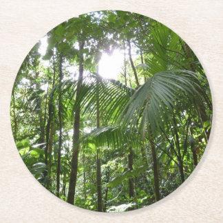 Sunlight Through Rainforest Canopy Tropical Green Round Paper Coaster