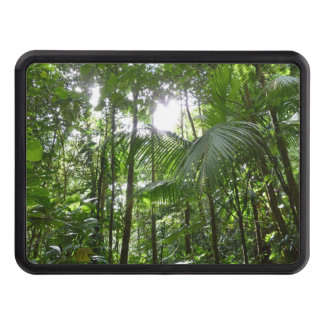 Sunlight Through Rainforest Canopy Tropical Green Tow Hitch Cover