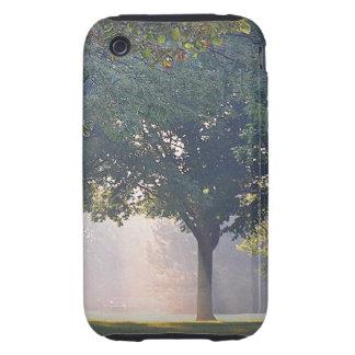 Sunlight Tree iPhone Case