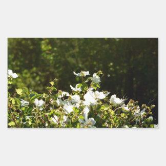Sunlit Alpine Wildflowers Rectangular Sticker