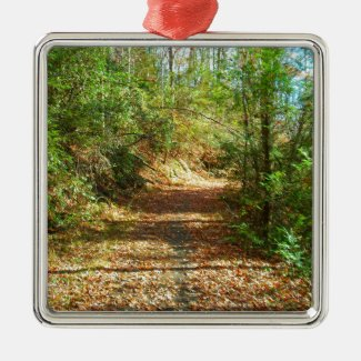 Sunlit Autumn Forest Trail Square Metal Christmas Ornament