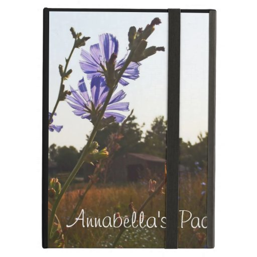 Sunlit Barn ~ Powis iCase iPad Kickstand Cover iPad Folio Case