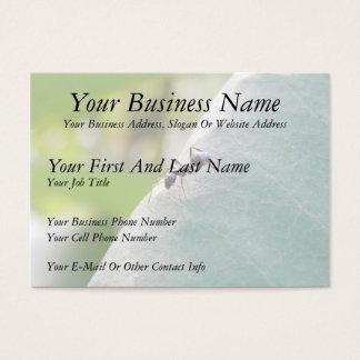 Sunlit Black Ant Business Card