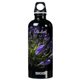 Sunlit Blooming Purple Agapanthus, African Lily Aluminum Water Bottle