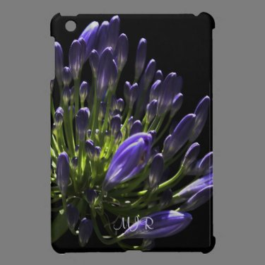 Sunlit Blooming Purple Agapanthus, African Lily iPad Mini Cover