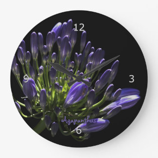 Sunlit Blooming Purple Agapanthus, African Lily Large Clock