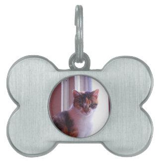 Sunlit Calico Pet ID Tag