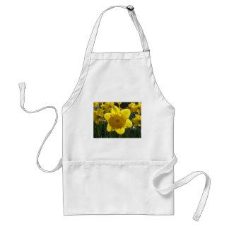 Sunlit Daffodil Adult Apron