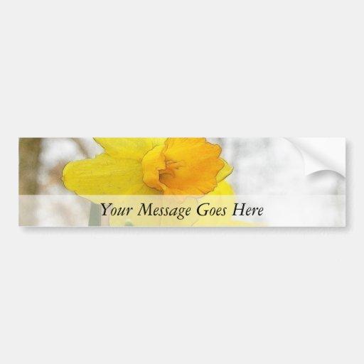 Sunlit Daffodils Car Bumper Sticker