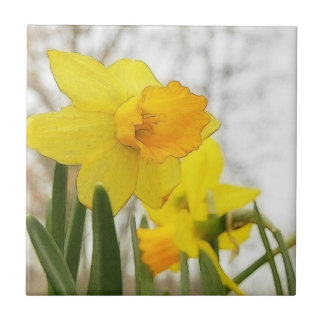 Sunlit Daffodils Small Square Tile