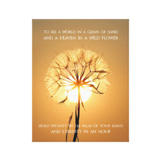Sunlit Dandelion Inspirational Nature Poetry Canvas Print