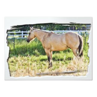 Sunlit Dappled Morning w/ White Frame Card