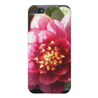 Sunlit Dark Pink Water Lily Flower Cover For iPhone SE/5/5s