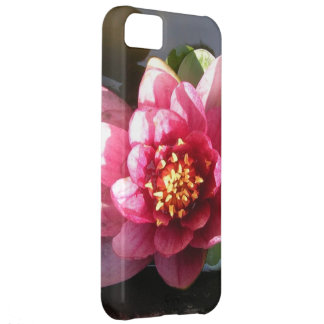Sunlit Dark Pink Water Lily Flower iPhone 5C Cover