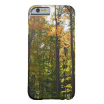 Sunlit Fall Forest Autumn Landscape Photography Barely There iPhone 6 Case