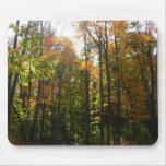 Sunlit Fall Forest Autumn Landscape Photography Mouse Pad
