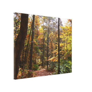 Sunlit Fall Trail in Laurel Hill State Park Canvas Print
