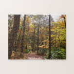 Sunlit Fall Trail in Laurel Hill State Park Jigsaw Puzzle