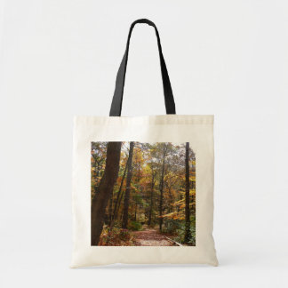 Sunlit Fall Trail in Laurel Hill State Park Tote Bag