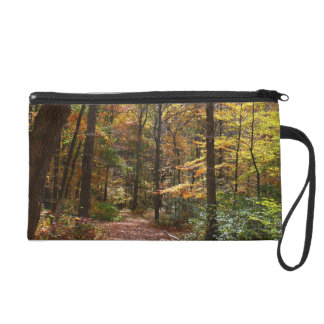 Sunlit Fall Trail in Laurel Hill State Park Wristlet Purse