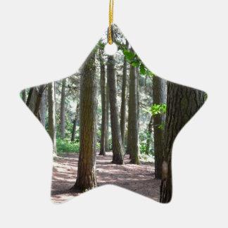 Sunlit Forest Floor Ceramic Ornament