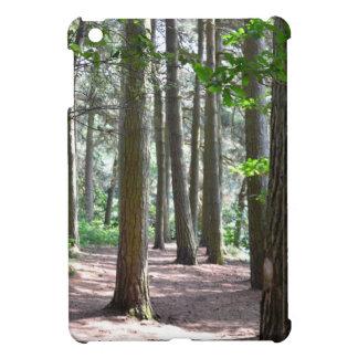 Sunlit Forest Floor iPad Mini Cases