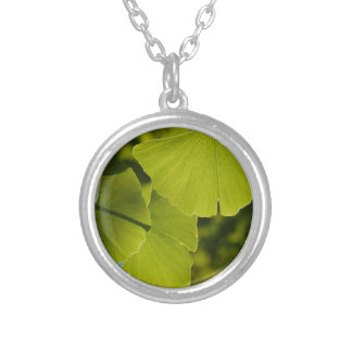 Sunlit Ginkgo Leaves Silver Plated Necklace
