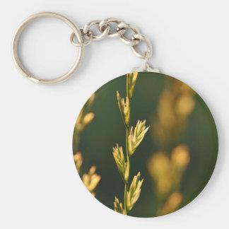 Sunlit grass keychain