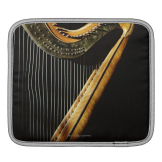 Sunlit Harp iPad Sleeve