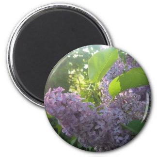 Sunlit lilacs mousepad 2 inch round magnet