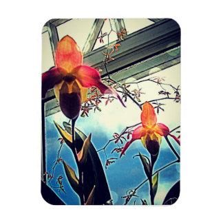 Sunlit Orchids Flexi Photo Magnet