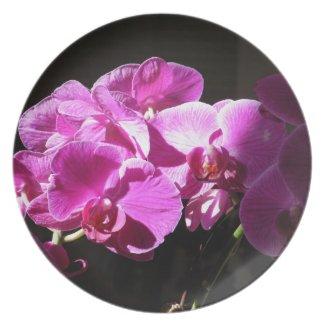Sunlit Orchids Party Plate