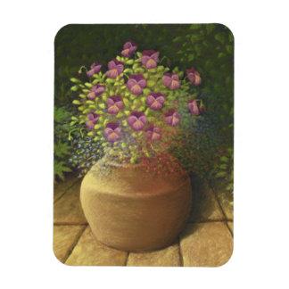 Sunlit Pansies and Lobelia in Pot Photo Magnet
