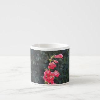 Sunlit Pink Penstemon Flower Espresso Mug