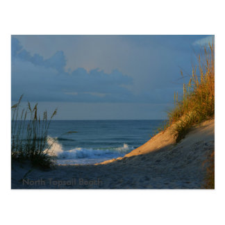 'Sunlit' Postcard