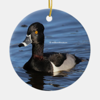 Sunlit Profile of a Ring-Necked Duck Ceramic Ornament