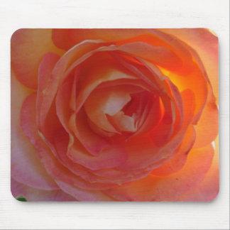 Sunlit Rose Mouse Pad